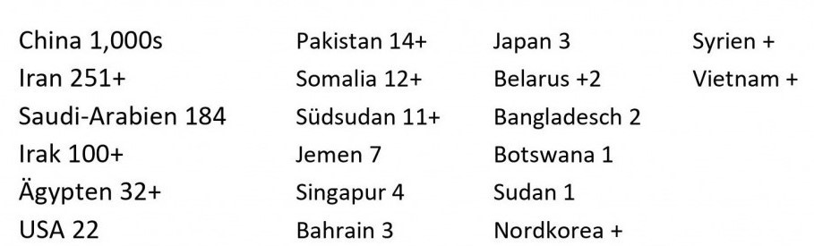 Documented numbers of executions by Amnesty International